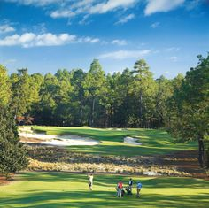 Golf School Pinehurst one of the golf courses on the PGA's Most Beautiful Golf Course List. - For reservations or tee time inquiries, call General Inquiries Famous Golf Courses, Public Golf Courses, Pinehurst Resort, Golf Apps, Augusta Golf, Golf Course Reviews, Golf Photography, Golf Training, Golf Humor