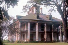 Abandoned Plantations, Louisiana Plantations, Abandoned Houses, Old Houses, Beautiful Buildings, Beautiful Homes, Southern Plantation Homes, Jefferson Parish, Old Mansions