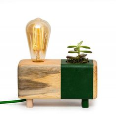 This item is unavailable Cactus Lamp, Best Desk Lamp, Natural Structures, Green Cactus, Standard Lamps, Ring Displays, Lamp Table, Planting Bulbs, Raw Wood