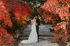 Shots like this make the case for fall weddings.