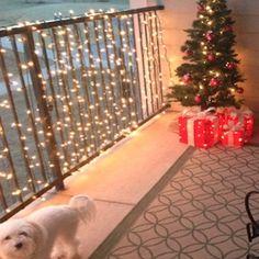 Outdoor Christmas Apartment Decor Christmas Lights for an Apartment Porch Outdoor Christmas, Winter Christmas, Christmas Home, Christmas Heaven, Holly Christmas, Apartment Porch, Apartment Ideas, Decorate Apartment, Diy Home Decor Rustic
