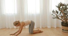 упражнения без уреди