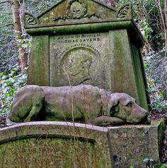 Cementerio Watchdog