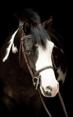 Via` Life is Beautiful  eyes