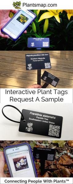 Plants Map makes it easy and affordable to order custom, interactive NFC and QR Code enabled plant tags, plant signs and plant labels that connect your plant information to your smartphone. Cheap Landscaping Ideas, Home Landscaping, Backyard Ideas, Garden Ideas, Outdoor Learning Spaces, Signage Display, Plant Labels, Plant Identification, Square Foot Gardening