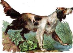 Oblaten Glanzbild scrap die cut chromo  Hund dog  15cm