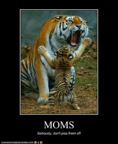 Moms: Seriously, don't piss them off!