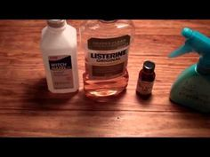 ▶ Effective, Homemade No-See-'Em Repellent! - YouTube