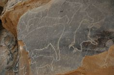 The recent discovery of a stunning array of engraved rock art at Qurta in Upper Egypt, which may be 15,000 years old by Dr Dirk Huyge and his team.
