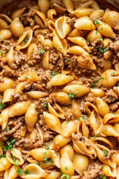 Easy Creamy Beef and Shells This beef and shells recipe is creamy, easy to make, and makes ground beef extra tasty. Chop Meat Recipes, Veal Recipes, Healthy Meat Recipes, Pasta Recipes, Chili Recipes, Ground Beef Pasta, Ground Beef Dishes, Ground Beef Recipes Easy, Recipe With Ground Beef And Noodles