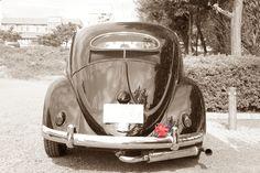 VW type-1 oval