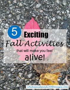 5 Exciting Fall Activities that will make you feel alive #travelaccessories