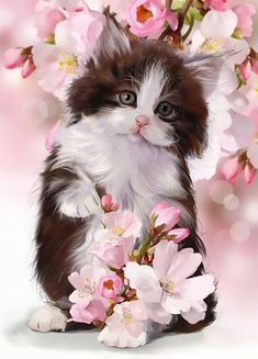 New Full Diy Diamond Painting animal Cross Stitch round Diamond Embroidery cute cat flowers Diamond Mosaic painting Crafts Cute Cats And Kittens, I Love Cats, Kittens Cutest, Animals And Pets, Baby Animals, Cute Animals, Photo Chat, Cat Wallpaper, Domestic Cat