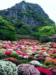 Mifuneyama Gardens in Takeo, Saga