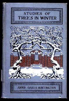 Studies of Trees in Winter...Annie Oakes Huntington   1902