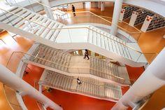 Campus Einaudi – Torino, Italy / Multifloor Nd Uni flooring https://www.pinterest.com/artigo_rf/multifloor-nd-uni/