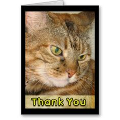 [ Cat Cards ] - Best Free Home Design Idea & Inspiration Thank You Greeting Cards, Thank You Greetings, Custom Thank You Cards, Well Images, Birthday Postcards, Happy Birthday Wishes, Get Well, Postcard Size, Cats