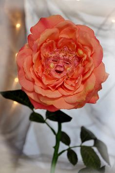 Alice in Wonderland Peach smiling rose  Flower by ShariDeppDesigns, $49.99