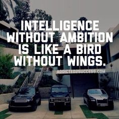 intelligence without ambition is like a bird without wings