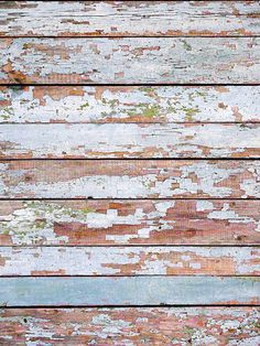 April Showers Weathered Wood Floor Backdrop / 483