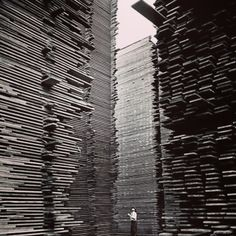 Photographic Print: Man Standing in the Lumberyard of Seattle Cedar Lumber Manufacturing by Alfred Eisenstaedt : Cedar Lumber, Lumber Mill, Hardwood Lumber, Cedar Wood, Man Standing, Futuristic Architecture, Image Photography, Classic Photography, Vintage Pictures