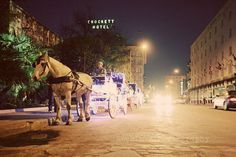 The most romantic way to see San Antonio is by carriage. Photo Credit: Melody A.