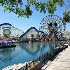 Californian Disneyland by @um_olhar_a_mais  #california #usa #disneyland #waltdisney #disneyparks #disney #fun #leisure #funtime #familytime #amusementpark #themepark #ferriswheel #observationwheel #rides #attraction #hotelscan #travel #weekend #traveling #visiting #igers #instagramers #instalike #instamood #letsgo #instatravel #instago #travelgram by hotelscan_official