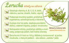 Info-zerucha.png 948×600 pixels