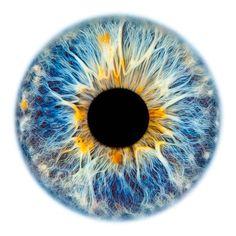 Windows to the Soul - Iris gallery by Fine Art Photographer Edouard Janssens. Photo Oeil, Beautiful Eyes Color, Eye Texture, Realistic Eye Drawing, Eye Close Up, Eyes Artwork, Eye Logo, Aesthetic Eyes, Dragon Eye