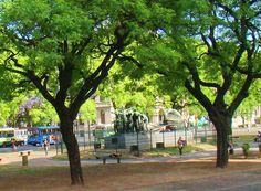 Plazoleta Olazábal, San Telmo, Buenos Aires, Argentina.