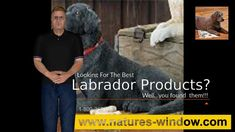 Labrador products by Nature's Window