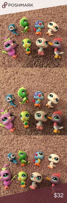 LITTLEST PET SHOP 8 littlest Pet Shops birds $5.00 each or $32.00 for all of them.. comment me if you have any questions. Littlest Pet Shop we have 100's if you don't see the one you're looking for just ask... Littliest Pet Shop Accessories
