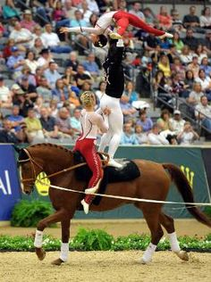 Team USA (World Equestrian Games 2010) Gold Medalists