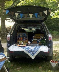 """date night idea """"Tailgate picnic! Picnic Time, Summer Picnic, Summer Fun, Summer Days, Coffee Bar Wedding, Team Mission, Trunk Party, Tailgating, Football Tailgate"""