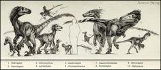 Dromaeosaurids  & kin