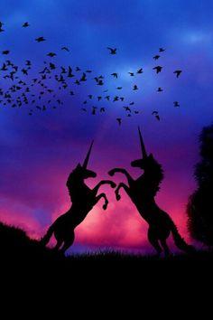 Sunset. Animals. Unicorn. birds