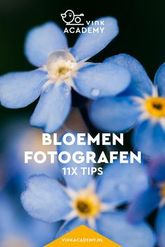 Bloemen fotograferen: 11 tips • Vink Academy Digital Art Tutorial, Studio Setup, Love Photography, Art Tutorials, Photoshop, Poster, Portrait, Pictures, Inspiration