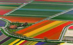 #Olanda# Spettacolare #paesaggio#