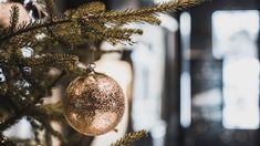 Christmas at Vestlia Resort, Geilo, Norway. Norway, Christmas Bulbs, Holiday Decor, Home Decor, Decoration Home, Christmas Light Bulbs, Room Decor, Interior Design, Home Interiors