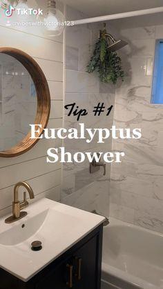 Feng Shui Bathroom, Shower Plant, Eucalyptus Shower, Bathroom Interior Design, Shower Heads, Plant Decor, Natural Skin Care, Essential Oils, House Design