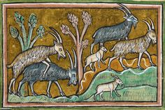 discarding images - goats 'the Rochester Bestiary', England 13th...