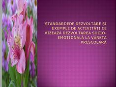 1.Prezentare Teorie Standarde de Dezvolta1.Re Si Dezvoltarea Abilitatilor Socio-emotionale