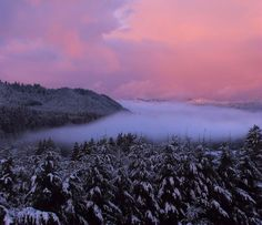 ✮ Pink Sunrise With Foggy River