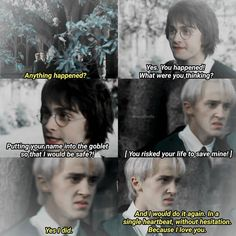 Ideas Quotes Harry Potter Draco For 2019 Harry Potter Comics, Harry Potter Draco Malfoy, Harry Potter Ships, Harry Potter Jokes, Harry Potter Universal, Harry Potter Fandom, Draco Malfoy Quotes, Tom Felton, Daniel Radcliffe