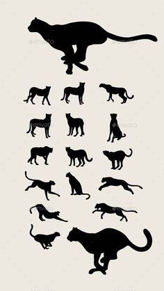 Cheetah Set Silhouettes - Animals Characters