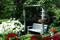 white bench on the garden - Szukaj w Google