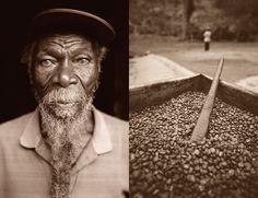 The Good Stuff:  Jamaica's Blue Mountain Coffee - National Georgraphic Adventure (Rasta Barista)