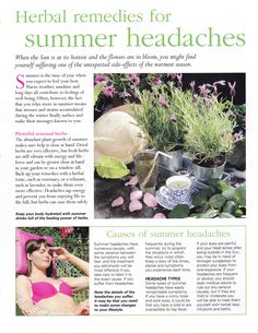 Herbal remedies for summer headaches