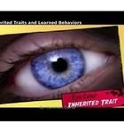 Inherited Traits and Learned Behaviors POWERPOINt Vocabulary trait, behavior, inherited trait, heredity, gene, learned behaviors... 5th Grade Classroom, 5th Grade Science, Earth Science, 5th Grades, Best Teacher, Genetics, Vocabulary, Behavior, Notes