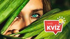 Starostlivosť o oči nesmieš podceniť, život s dioptrickými okuliarmi je plný nepríjemných situácií Laserová operácia dokáže opraviť akúkoľvek dioptrickú poruchu, zvládne dokonca aj astigmatizmus EXCIMER je najdlhšie pôsobiace očné laserové centrum na Slovensku, operovalo už 85 000 pacientov Lens, Klance, Lentils